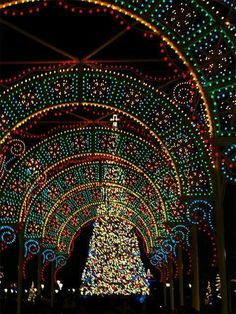 Christmas tree at Disney's Epcot