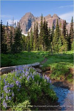 Three Fingered Jack, Mt. Jefferson Wilderness, Oregon.