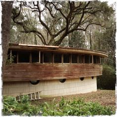 The only home in Florida designed by Frank Lloyd Wright, Tallahassee Another masterpiece by FLW -- love the unique window placement. Vintage Florida, Old Florida, Florida Home, Abandoned Mansions, Abandoned Buildings, Abandoned Places, Abandoned Castles, Frank Lloyd Wright Homes, Places In Florida
