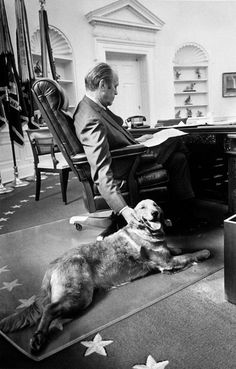 U.S. President Gerald Ford studying budget matters in the Oval Office while petting golden retriever Liberty. (Photo by Ricardo Thomas/White House/Time Life Pictures/Getty Images)
