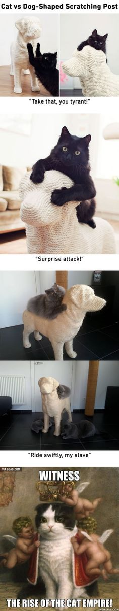 """Cats will have their sweet revenge with this """"Dog-Shaped Scratching Post"""""""