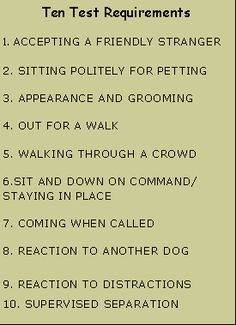 Tips for dog training for obedience - Talk with the vet about which foods you ou. - Dog Health and Training - Dogs Therapy Dog Training, Service Dog Training, Puppy Obedience Training, Agility Training For Dogs, Training Your Puppy, Therapy Dogs, Dog Agility, Service Dogs, Dog Training Tips
