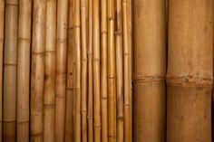 Blog de decoración Bambu, ekologinen rakennusmateriaali? / Bamboo, an ecological construction material?