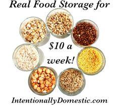 Real Food Storage on $10 a Week