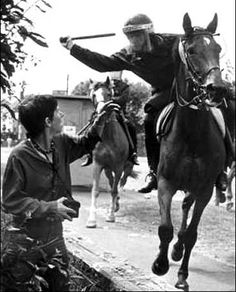Iconic images of the strike: http://www.defendtherighttoprotest.org/wp-content/uploads/2012/11/miners-strike-orgreave.jpg