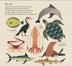 Loco por los tiburones