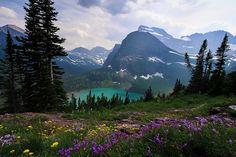 Grinnel Glacier Trail