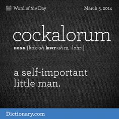 This is my ex in so many ways. This describes too many men, but they brought it on themselves. [little crooked dick] cockalorum kok-uh-LAWR-uhm, -LOHR- , noun; a self-important little man. Unusual Words, Rare Words, Unique Words, Great Words, New Words, Beautiful Words, Word Nerd, Writing Words, English Words