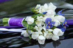 bouquet-flowers-blue-white-colors-irises-tulips-wedding-ceremony-40261616.jpg (800×533)