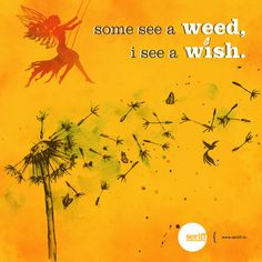 Some see a weed, I see a wish. Best Quotes, Funny Quotes, Daily Wisdom, Corporate Branding, Graphic Design Studios, Perception, Invitation Design, Event Design, Creative Design