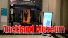Māori Court, Auckland Museum Auckland, Galleries, Museum, Travel, Maori, Voyage, Viajes, Traveling, Trips