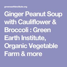 Ginger Peanut Soup with Cauliflower & Broccoli : Green Earth Institute, Organic Vegetable Farm & more