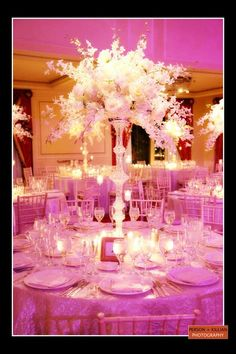 Look at this beautiful place setting. This is a picture to definitely get inspired from. Notice the white candles in the middle surrounding the beautiful purple adn white flowers on top. Also, a great thing to look into is the lighting for your event. Specific lighting always helps out your event. Such a beautiful photo!