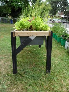 Self-Watering Veggie Table: 15 Steps (with Pictures) Cool Plants, Organic Gardening, Diy Raised Garden, Self Watering, Garden Table, Hydroponic Gardening, Garden Boxes Raised, Container Gardening, Urban Garden