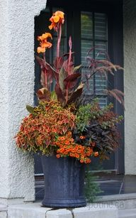All About My Garden » Spring Containers