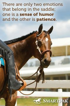 """There are only to emotions that belong in the saddle; one is a sense of humor and the other is patience."" This is so true"