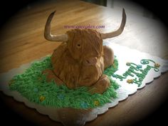 . Show Steers, Cow Cakes, Realistic Cakes, Cake Gallery, 4 H, Custom Cakes, Cattle, Cake Decorating, Christmas Ornaments