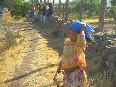 Fiesta patronal, Samo Bajo, Provincia del Limarí, IV Región de Coquimbo, Chile.