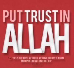 Put your trust in Allah.