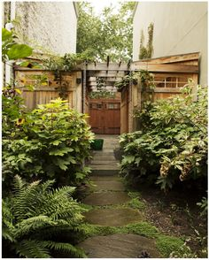 Kim Hoyt Architect Boerum Hill Project with Landscaping over Slate Walkway and Wood Arbor and Gates, Gardenista Sloped Garden, Backyard Pergola, Terraced Garden, Patio Roof, Pergola Kits, Shed Design, Garden Design, Small Gardens, Outdoor Gardens