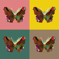 Make a real wow factor on your walls with this collection of Pop Art inspired Cotton Canvas prints. Butterfly Canvas, Whole Image, Colour Field, British Wildlife, Cotton Canvas, Woodland, Pop Art, Canvas Prints, Colours