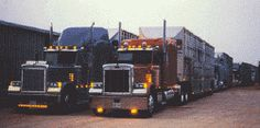 King Livestock Co Inc. ~Bullboy~ & ~Bullgirl~ Cowhauler - Big Rigs, Cowtown Cattle, Bull Haulers, Cow Trucks, Trucks Bull Wagons, Haulers Google, Cattle Haulers, Livestock Hauler - Bull Hauler