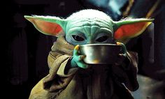 Ver Star Wars, Star Wars Baby, Yoda Meme, Yoda Funny, Starwars, Yoda Images, Yoda Pictures, Dark Vader, Pokemon Jigglypuff
