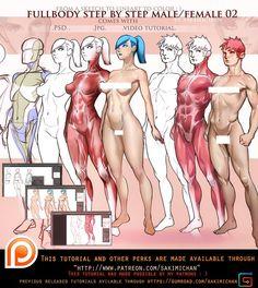 Fullbody Anatomy male/female vol 2 (term 16 reward)