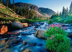 Indian Peaks Wilderness via MuralsYourWay.com