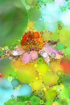 Pink Flower of Summer Art Print