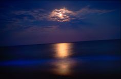 Night photograph of the moon over Cape Hatteras, North Carolina. Outer Banks. Maryland photographer.
