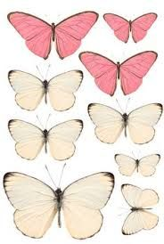 Image result for printable pink butterfly