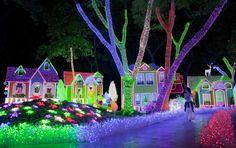 Augenblick: Lichterfest in Santo Domingo - SPIEGEL ONLINE