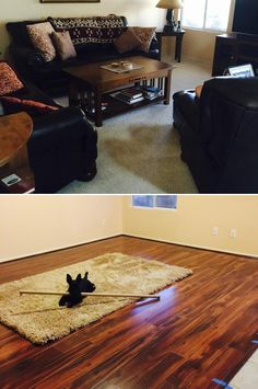 "Smart & Affordable Style! ""Replaced old Berber carpet with rich-toned Roasted Chickory. Looks so much better! Even our dog loves it! Makes the room feel more welcoming and more like our home."""
