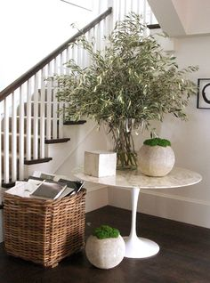 tulip table, wicker crate, olive branches