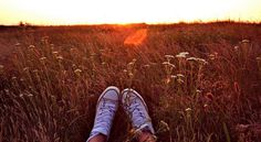 Der große Reichtum unseres Lebens, das sind die kleinen Sonnenstrahlen, die jeden Tag auf unseren Weg fallen. - Zitat von Hans Christian Andersen