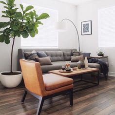 I freaking love everything about this room. The plant, the coffee table & the light. But I love their use of Canteleiver side table.