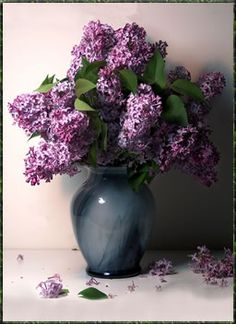 There is nothing like the scent of lilacs to bring me back to my childhood.  They are just so beautiful!