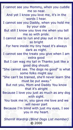Beautiful poem of a blind dog! Reminds me of Nips.
