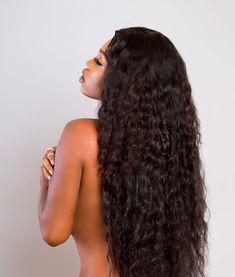 SHC Indian Curly - 1b / 16