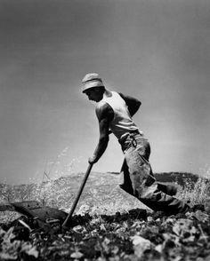 Robert Capa, Near Jerusalem. 1949. A French Jewish immigrant planting a vineyard.