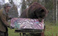 Juuso-karhu innostui maalaamaan vuoden tauon jälkeen – tältä näyttää taulu, jonka Suomen suurin uros teki miehille