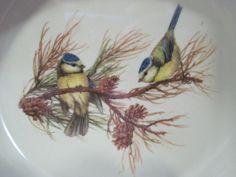 birds motif-4