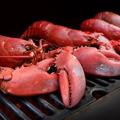 Learn how to cook the perfect lobster! We will give you all the instructions you need to cook a lobster like a professional chef. Lobster Bake, Live Lobster, How To Cook Lobster, Boiled Lobster Recipes, How To Cook Liver, Grilled Lobster, Island Food, Professional Chef