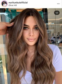 Brown Hair For Tan Skin, Hair Color For Brown Skin, Honey Brown Hair, Hair Color Auburn, Light Brown Hair, Light Hair, Hair Color For Morena Skin, Balayage Hair Brunette With Blonde, Blonde Hair Looks