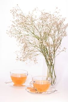 Free Stock Photo: Vase with fourishing twigs and two cups of tea placed on white background: Saucers, Saucer, Tea Cup, Flowers (photo 0004930603O) download from free photo stock Photl.com