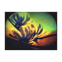 Floral Sunset View Wrapped Canvas Stretched Canvas Prints #zazzle #canvas #rpints #floral #sunset