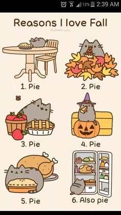 reasons to love fall: pie