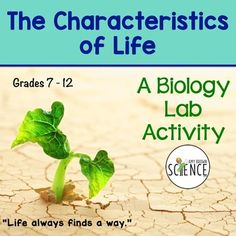 Students use living organisms (yeasts) to explore and learn about the characteristics that are shared by all living things.  This lab can be used to introduce the topic of living things and their characteristics, or can be used as review and reinforcement after the topic has been taught.