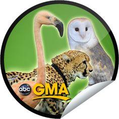 Jack Hanna on GMA on October 29!